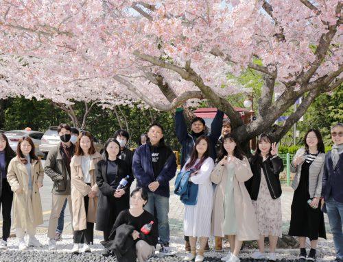 2020 프리젠트 벚꽃소풍